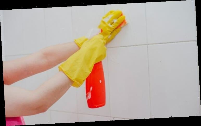 How to clean grout in shower – Get sparkling results with household cleaning products