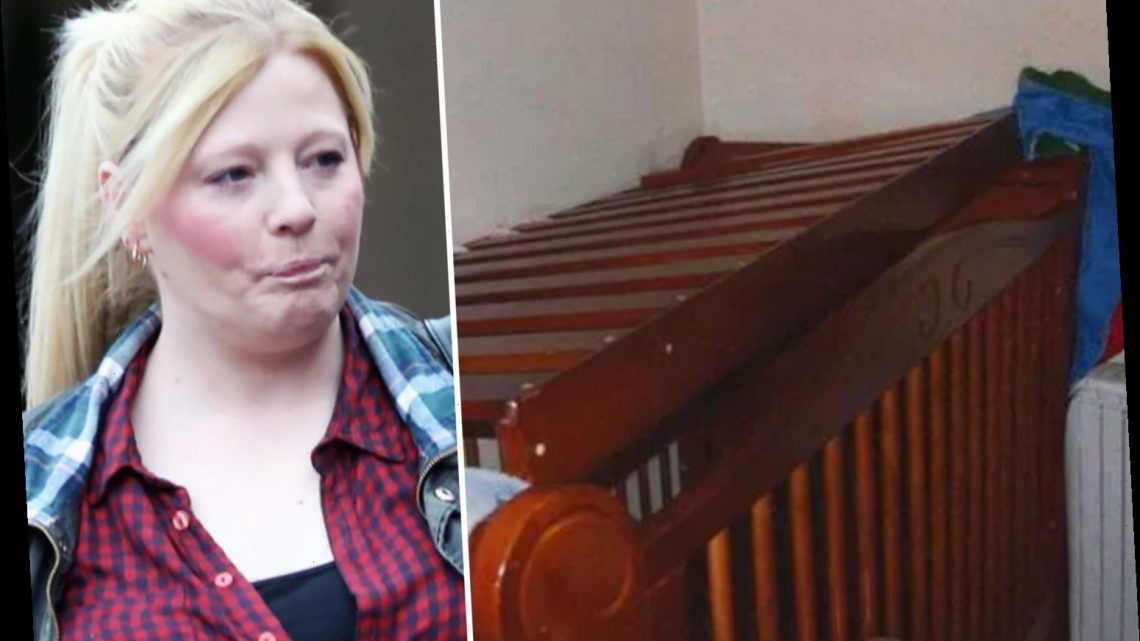 Major probe into why woman who kept toddler in cage allowed to look after kids after trying to sell a baby for £1m