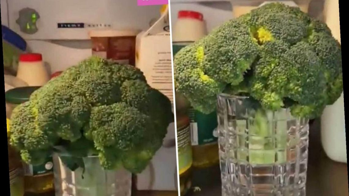 Woman reveals her simple tip to revive wilting veg & it will save you loads of cash on groceries