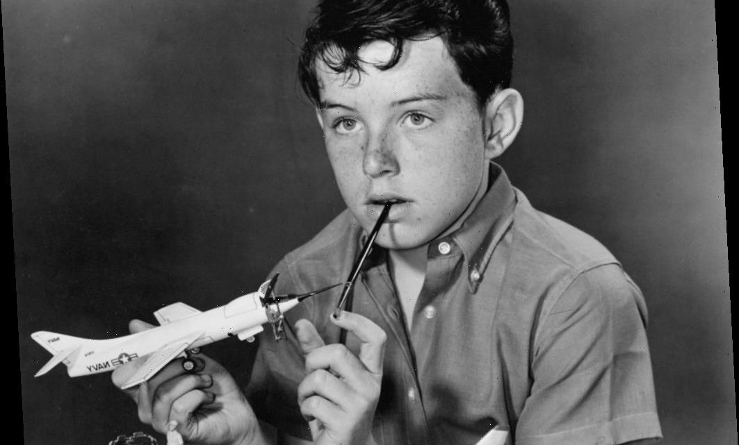'Leave It to Beaver's Jerry Mathers Was an Aspiring Rock Star: 'We Were Pretty Much Like a Garage Band'