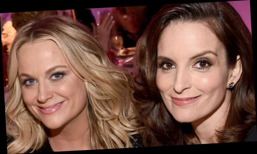 The Truth About Tina Fey And Amy Poehler's Relationship