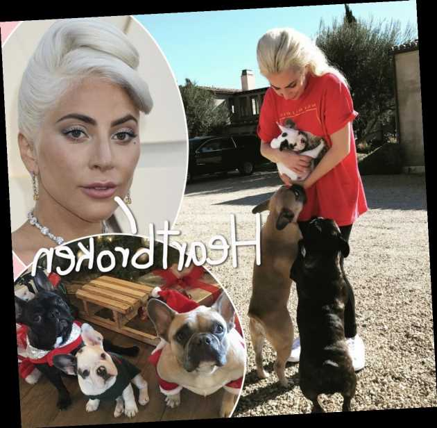 Lady GaGa 'Beside Herself' Following Dognapping & Update On Dog Walker!