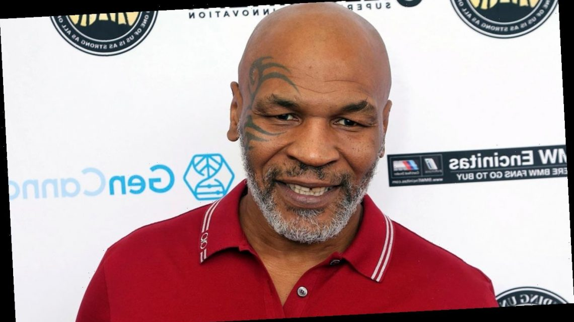 Mike Tyson calls Hulu's unauthorized biopic series 'cultural misappropriation'