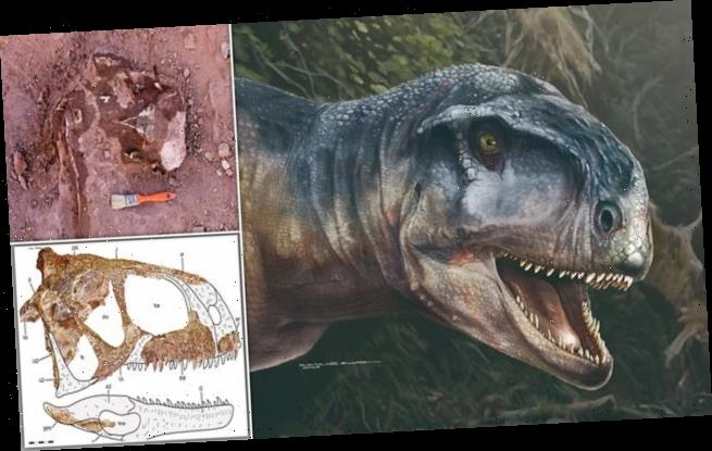 Terrifying new species of dinosaur dubbed 'the one who causes fear'