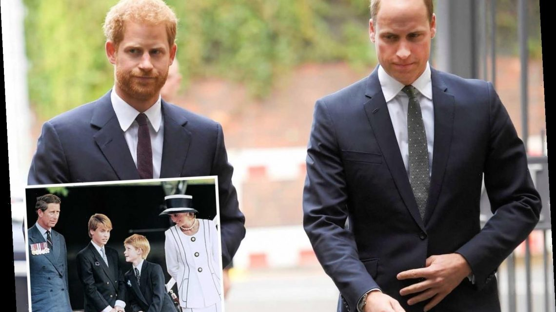 Prince William and Harry WILL put on a 'united front' after Oprah interview race rift for Princess Diana statue memorial