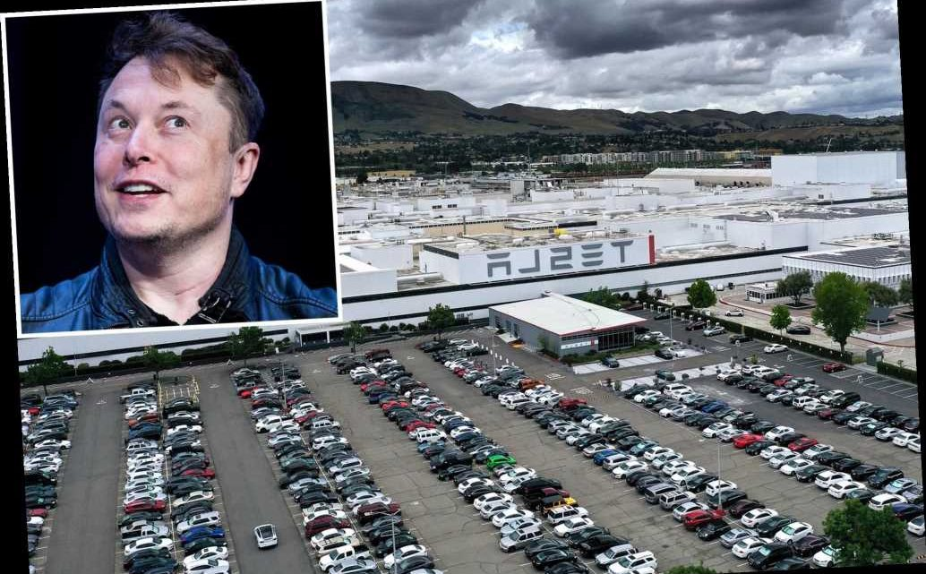 Tesla's California plant saw more than 400 COVID cases between May, December