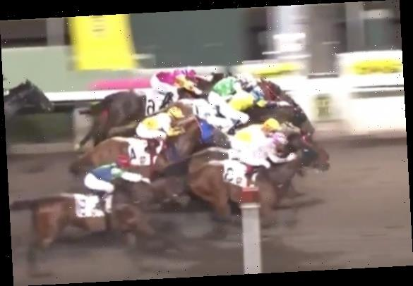 Watch dramatic four-horse photo finish where huge 40-1 outsider dead-heats against strong 6-4 favourite in Sha Tin