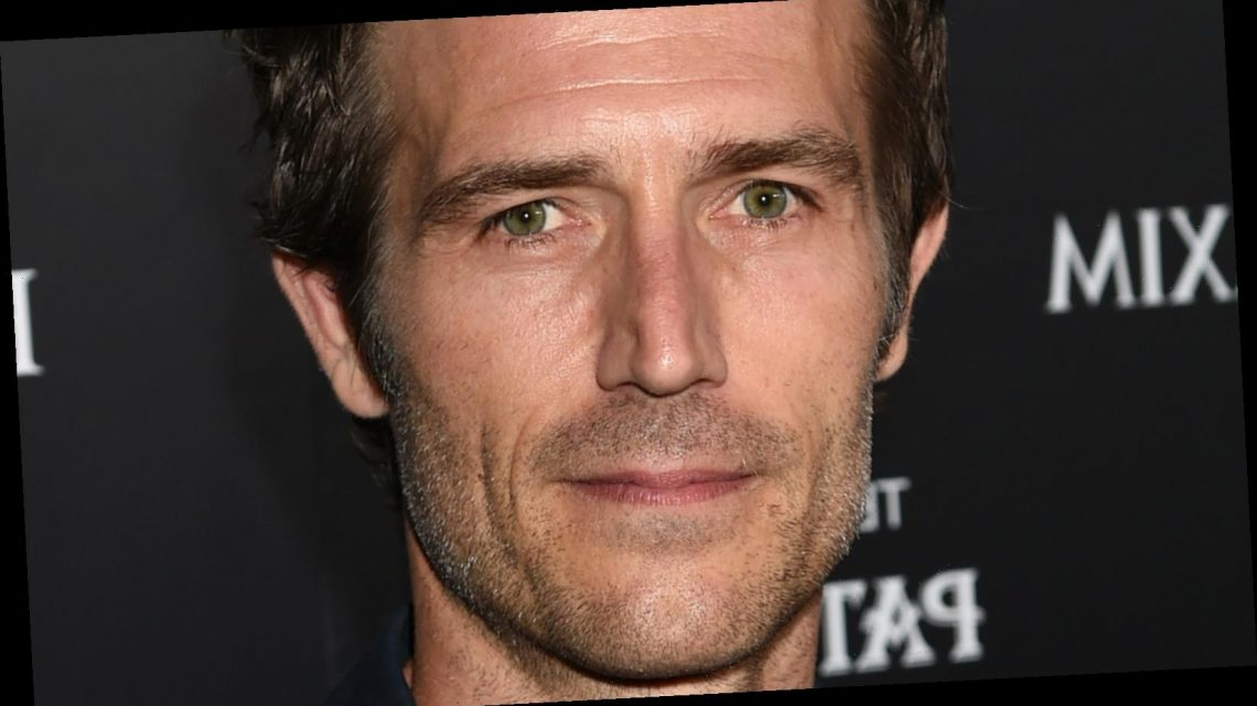 Michael Vartan: Why He Can't Find Work Anymore