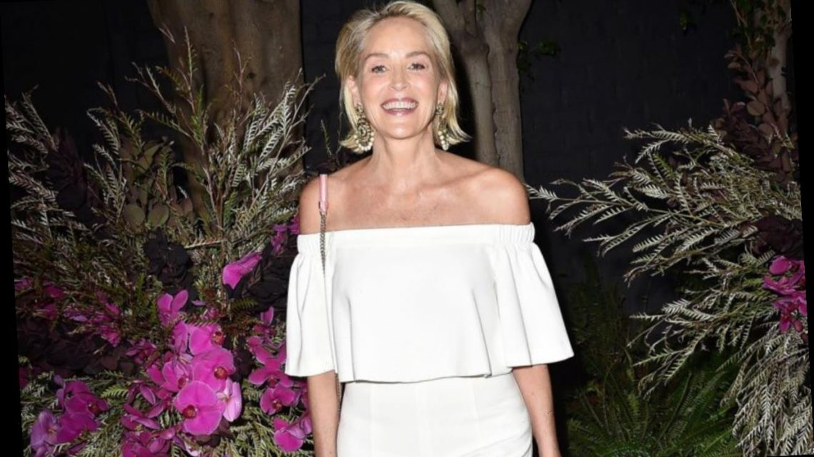 Sharon Stone Claims Online Dating Give 'Special Kind of Intimacy'