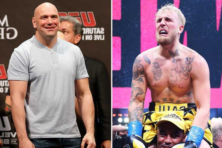 Dana White threatens to take legal action against Jake Paul and tells him to 'fight a f***ing boxer' instead of UFC star