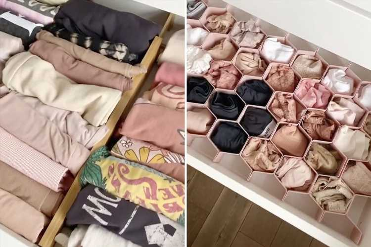 Organisation queen shares cheap buy which keeps her drawers tidy AND increases space