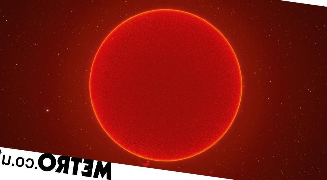 Stunning picture of the Sun is one of the clearest ever taken from Earth