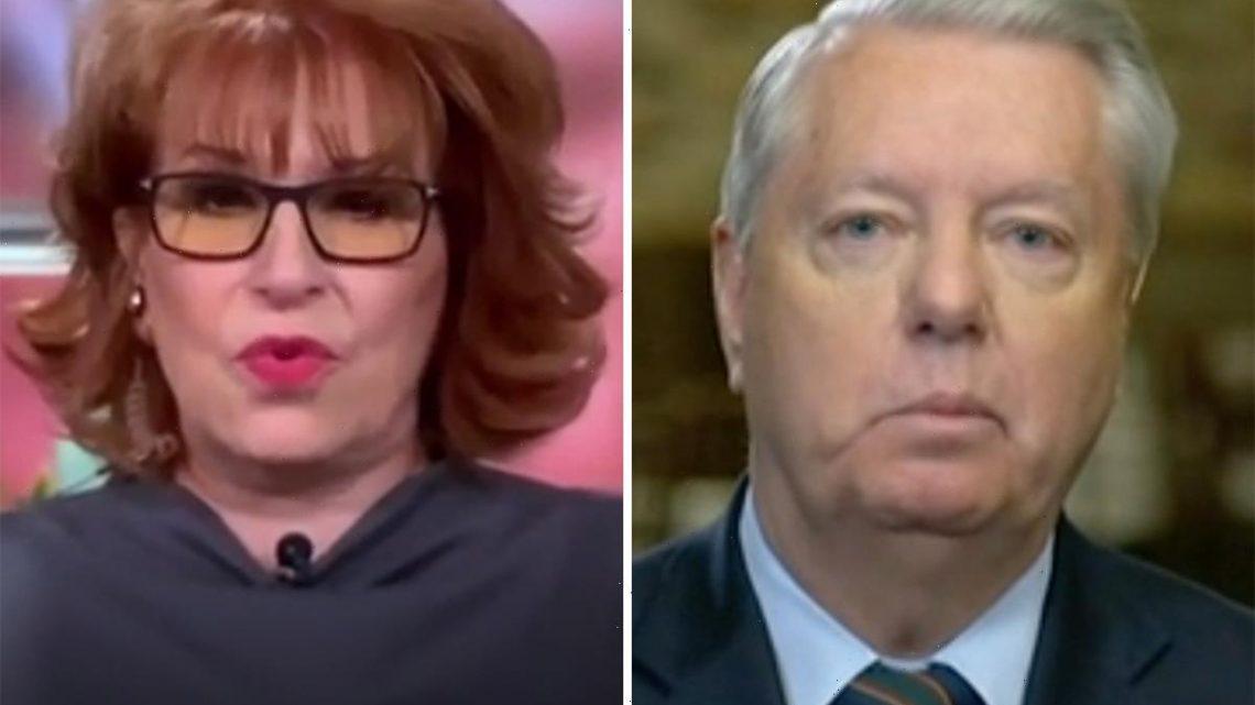 The View's Joy Behar slams Lindsey Graham & asks if people 'get dumber as you get older' after he denied US is 'racist'