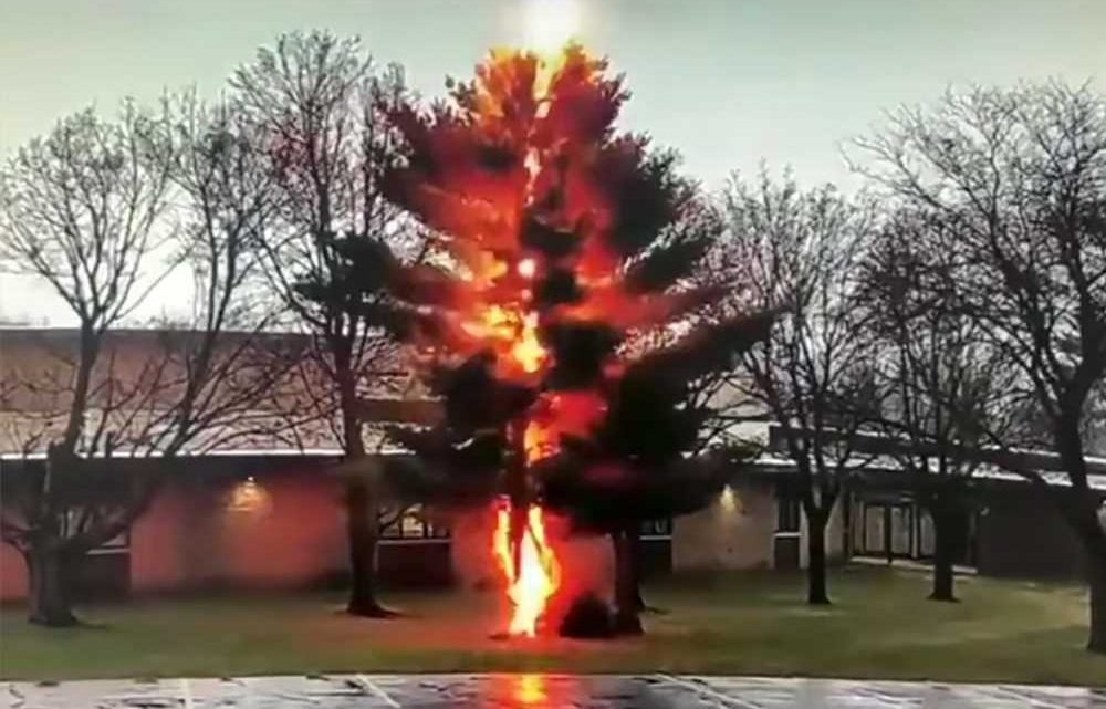 Video shows lightning torch tree outside Wisconsin school