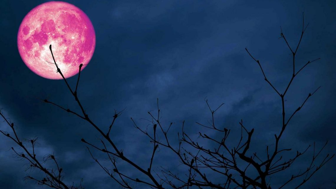 What does the pink supermoon mean for YOUR sign?