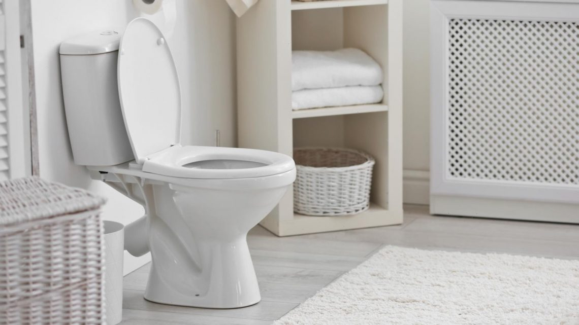 Why You Should Think Twice About Using The Bathroom 'Just In Case'