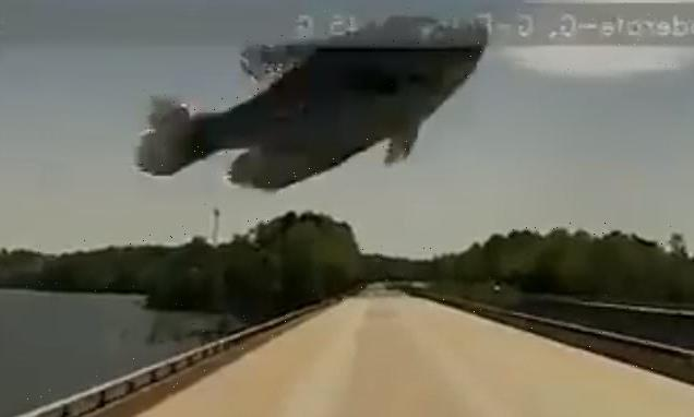 'Flying' fish smashes into truck driver's windshield