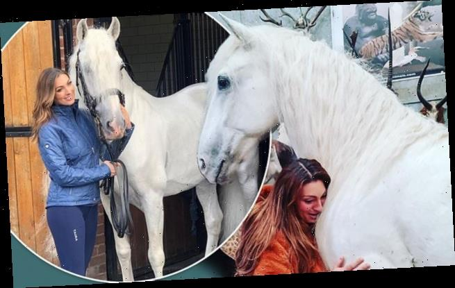 Luisa Zissman unveils the stuffed body of her DEAD horse Madrono