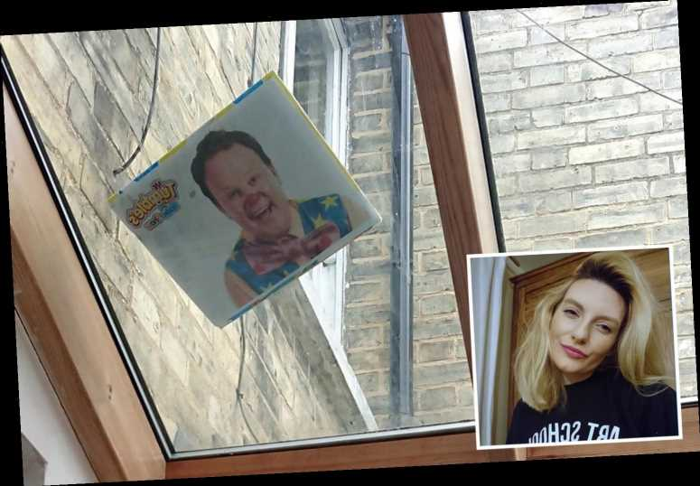Mum forced to stare at Mr Tumble's face 'every day for rest of her life' after son threw poster onto kitchen skylight