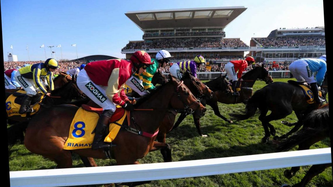 Grand National market mover Some Neck plummets in price as favourite Cloth Cap steady ahead of Saturday at Aintree