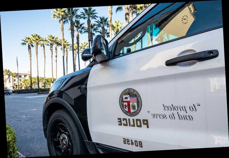 Video Shows LAPD Arresting Black Man Picking Up Trash Cans Near Home: 'Racial Profiling,' Says Lawyer