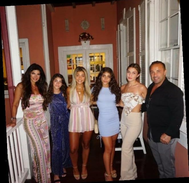 Teresa Giudice, Daughters, and Boyfriend Hold Family Dinner with Ex Joe