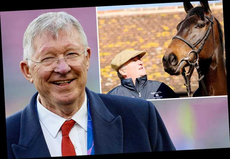 Grand National Festival day one tips: Templegate's best bet in each race including Sir Alex Ferguson's horse at Aintree