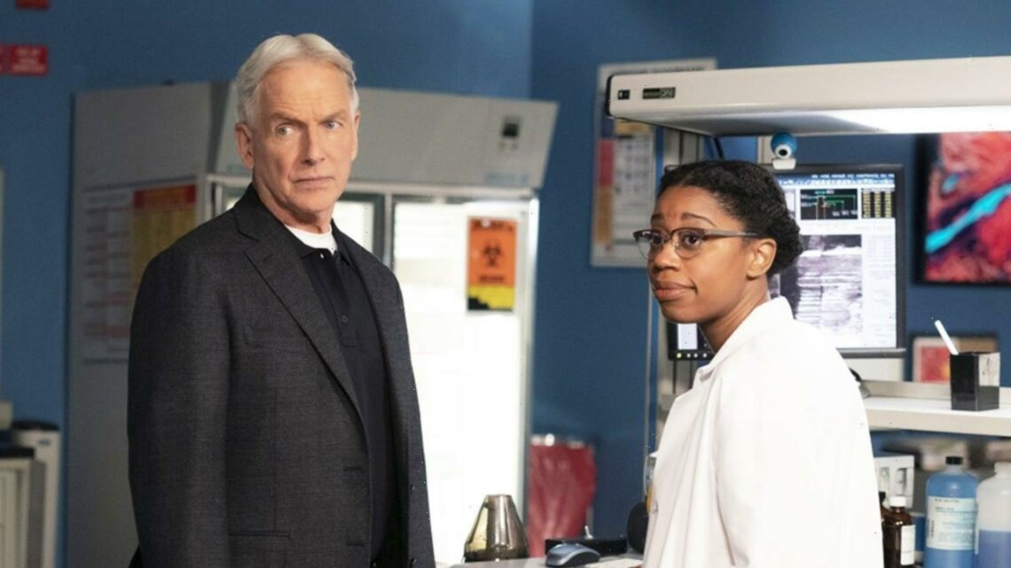 15 Police Procedural Shows Like 'NCIS' That You Can Watch Now