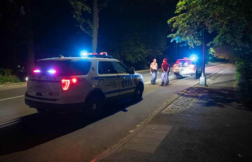 19-year-old raped in Central Park, police sources say
