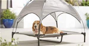 Aldi selling adorable sunshade loungers for dogs to keep them protected in hot weather