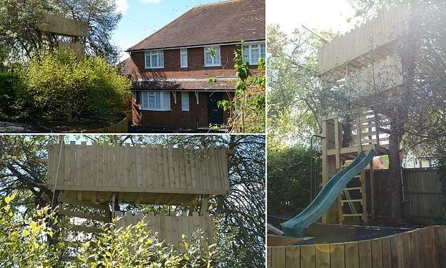 Father who built 16ft high wooden treehouse is ordered to demolish it