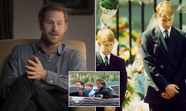 Harry 'didn't understand stranger's upset' following Diana's death