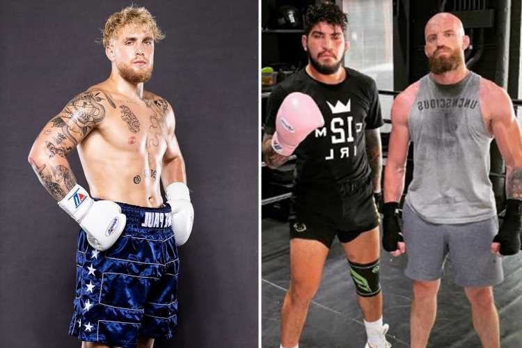 Jake Paul warned by would be KOd by UFC legend Conor McGregor's sparring partner Dillon Danis with fight in works