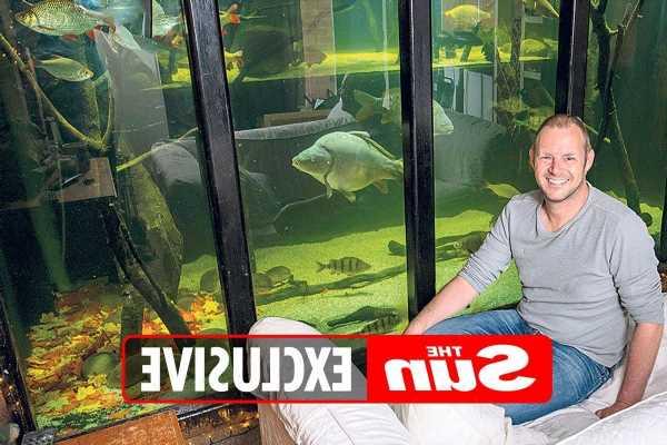 Man who hates TV spends £20,000 transforming house into giant aquarium