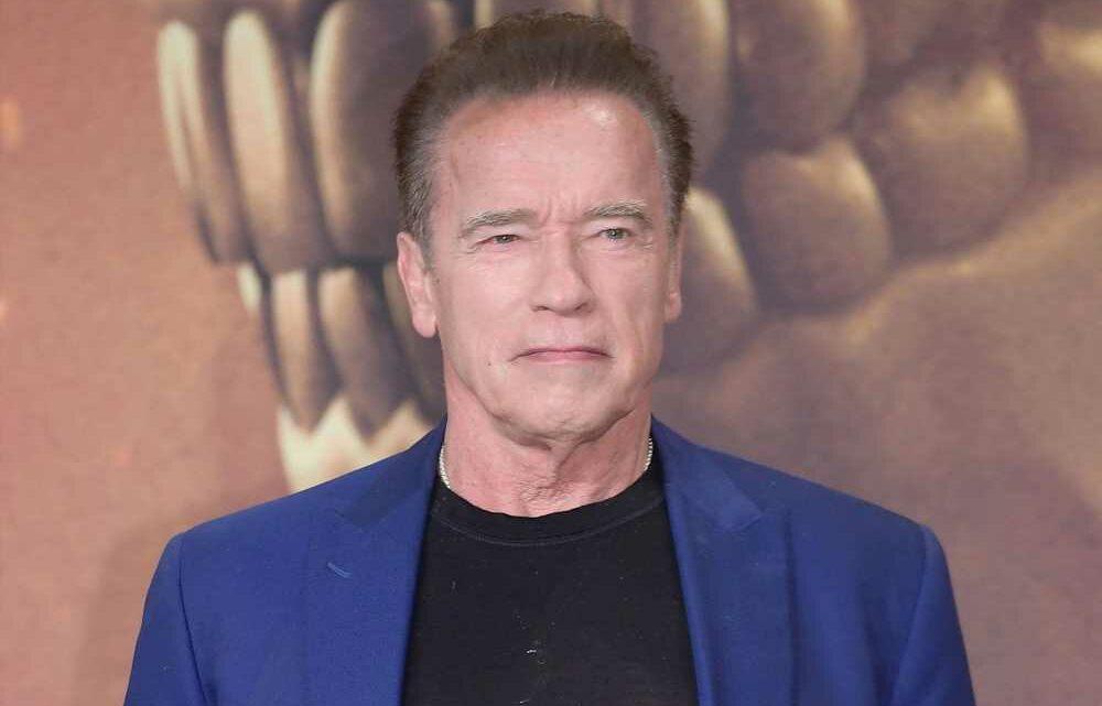 Netflix nabs Arnold Schwarzenegger's father-daughter spy drama