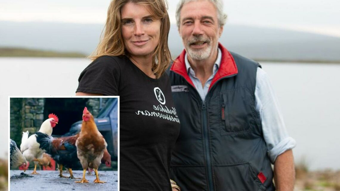 Our Yorkshire Farm's Clive Owen distraught as deadly flu rips through property