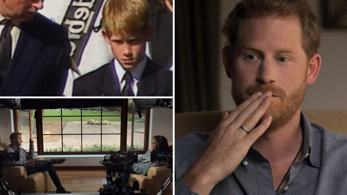 Prince Harry releases trailer showing him with Charles at Diana's funeral for his mental health doc The Me You Can't See