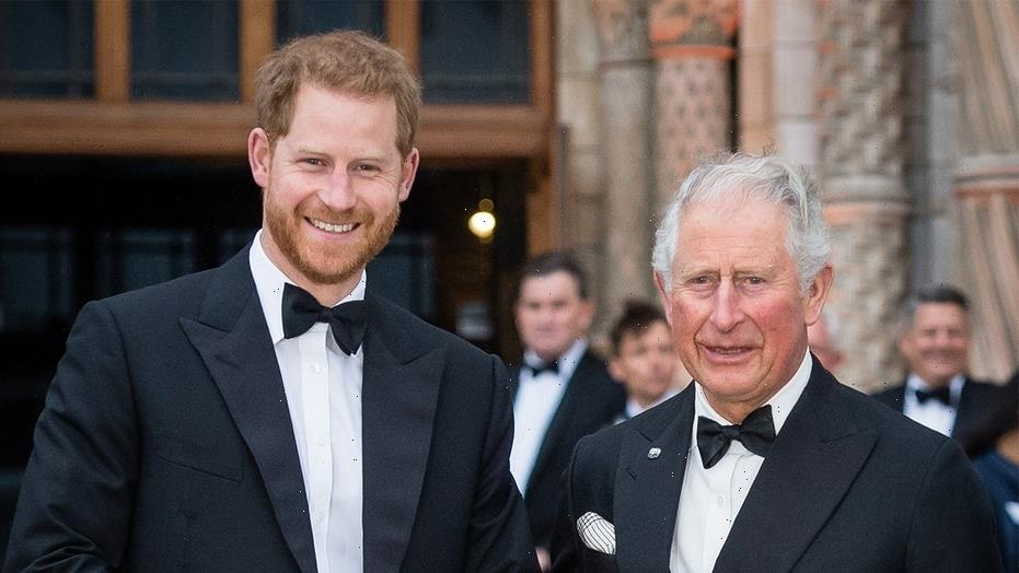 Prince Harry rips Prince Charles' parenting, suggests royal is the reason he 'suffered'
