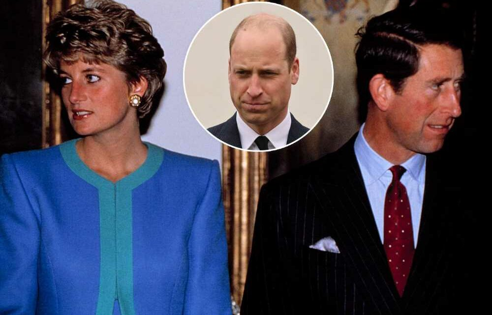 Prince William trolled for saying Diana interview led to divorce, not Camilla