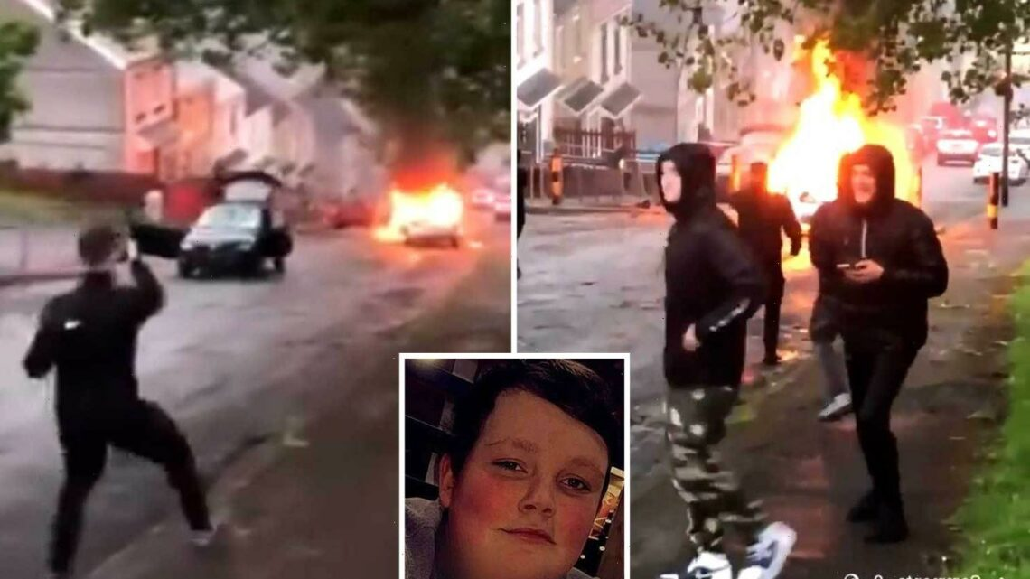 Swansea riots: Dad of teen whose death sparked chaos begs yobs to stop & says 'we don't want others to die'