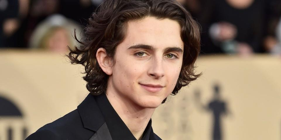 Timothée Chalamet Will Play Young Willy Wonka in New Warner Bros. Film