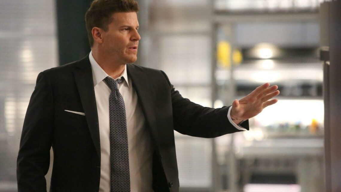 'Bones': David Boreanaz Accidentally Lied to Twitter About the Show Ending