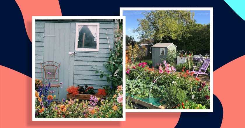 4 easy steps to getting started with an allotment