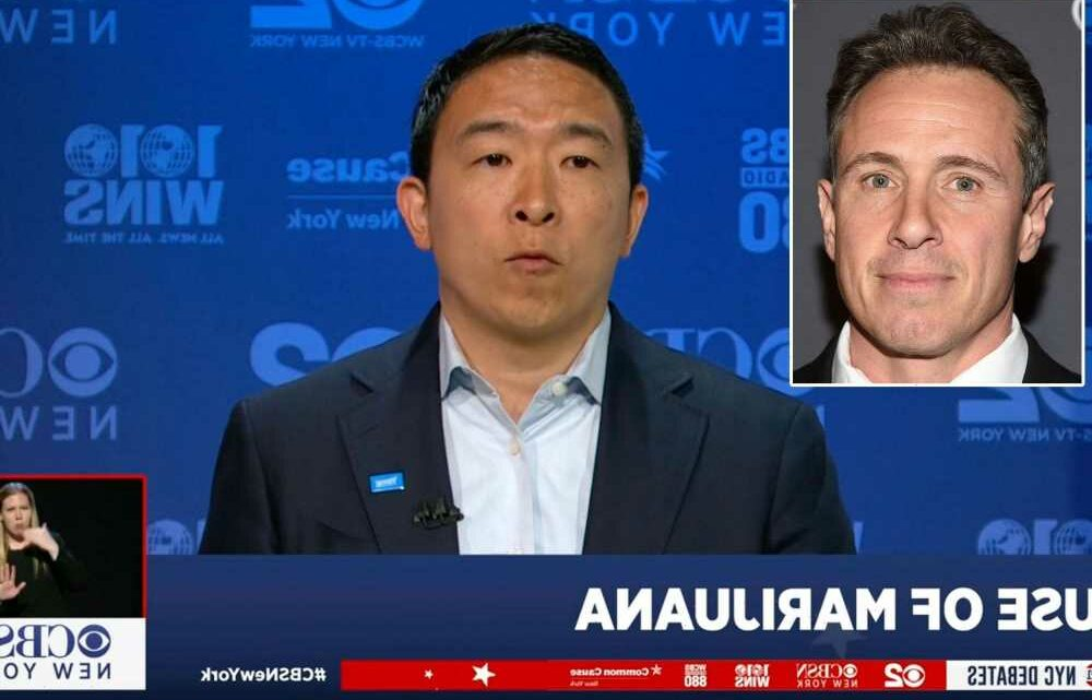 Andrew Yang on rapport with Gov. Cuomo: 'I worked with his brother at CNN'