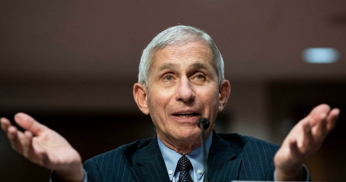 Fauci says China should share the medical records of Wuhan lab staff who were ill in fall 2019: 'What did they get sick with?'