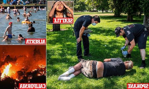 Heat wave cripples Pacific Northwest as over 230 people die in Canada