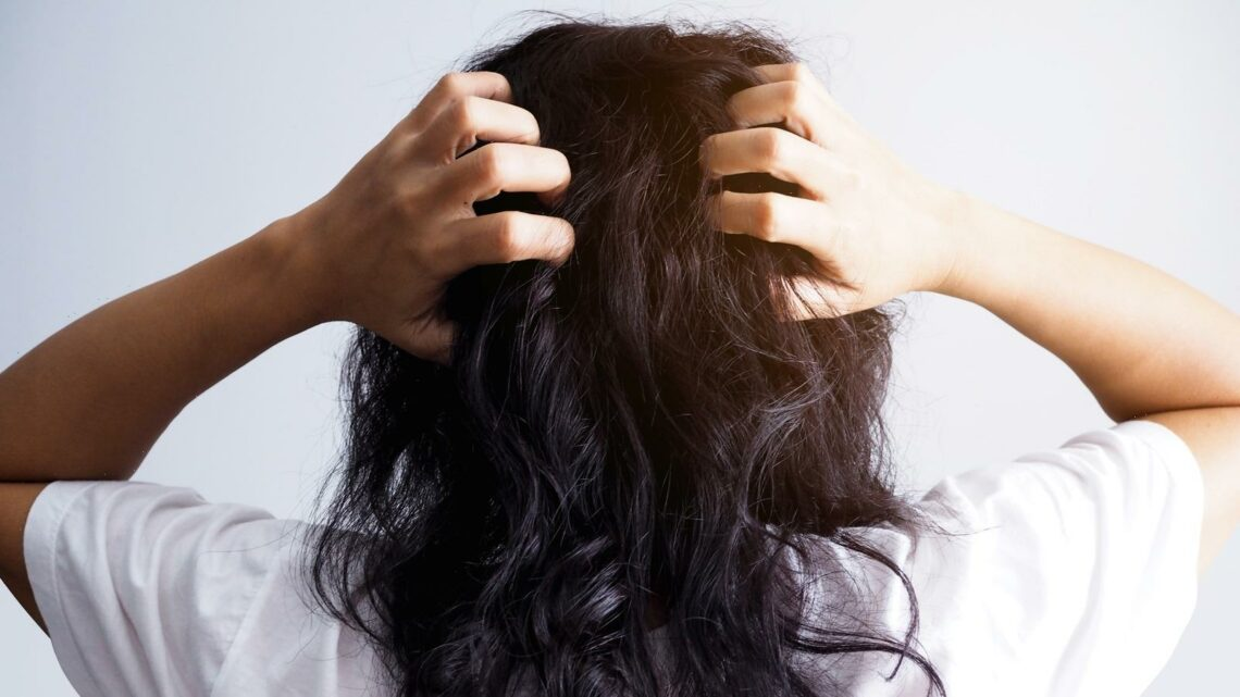 How To Smooth Frizzy Hair During Humid Summer Weather