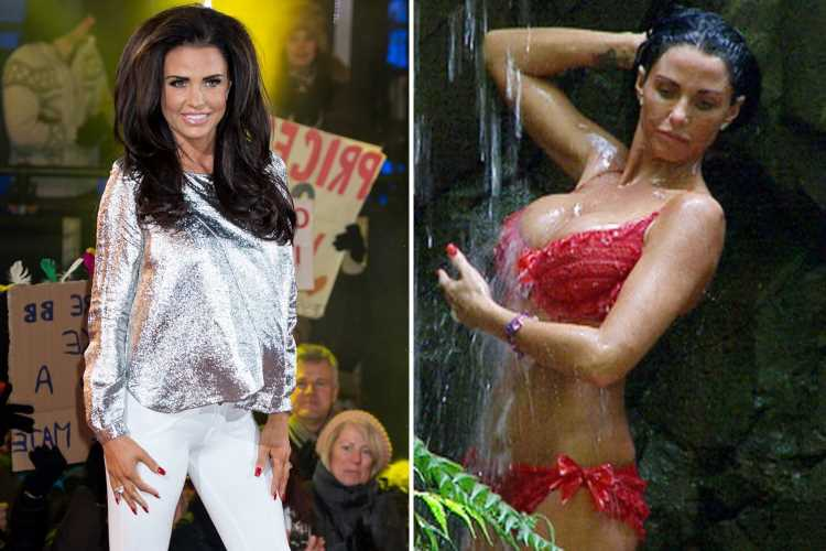 Katie Price 'offered big-money deal' to go on Big Brother Australia