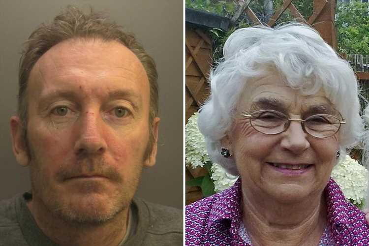 Mentally ill man who yelled 'kill' as he beat OAP, 87, to death with a cricket bat as she gardened jailed for life