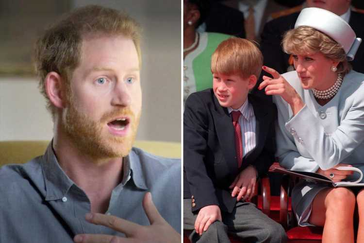 Prince Harry has turned his mum's death into a 'mini industry' with 'whinging' & it'll grate on William, says expert